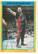1995 WWF Wrestling Trading Cards (Merlin) Bam Bam Bigelow 111