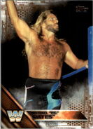 2016 WWE (Topps) Then, Now, Forever Michael Hayes 182