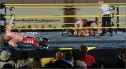 11-20-14 NXT 4 (1)