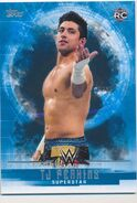 2017 WWE Undisputed Wrestling Cards (Topps) TJ Perkins 36