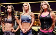 WWE NXT 10-5-10 024