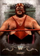 2016 Topps WWE Undisputed Wrestling Cards Vader 97