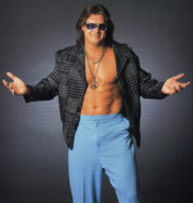 Mikeawesome 70sguy