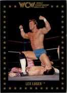 1991 WCW Collectible Trading Cards (Championship Marketing) Lex Luger 7