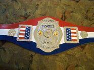 NWA National Champion (old) (2)