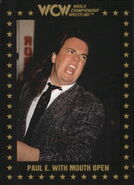 1991 WCW Collectible Trading Cards (Championship Marketing) Paul E. Dangerously 23