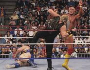 Royal Rumble 1991.7