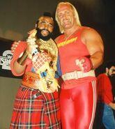 Hulk Hogan 26