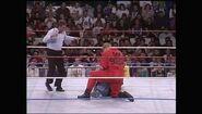 Survivor Series 1992.00014