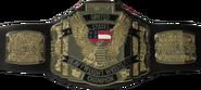 WCW United States Heavyweight Championship