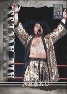 2002 WWF All Access (Fleer) Haku 6