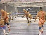 WrestleWar 1991.00045