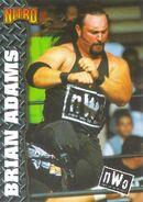 1999 WCW-nWo Nitro (Topps) Brian Adams 38