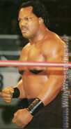 Ron Simmons (12)