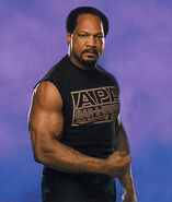 Ron Simmons (8)