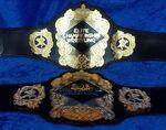 NWA-ECW Tag Team Titles