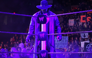 Undertaker steel steps