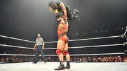 WrestleMania Revenge Tour 2014 - Newcastle.1
