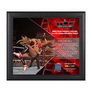 Nikki Bella TLC 2016 15 x 17 Framed Plaque w Ring Canvas