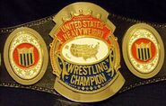 NWA United States Heavyweight Title 1982-83