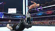 WrestleMania 33.42