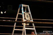 Ddt-ironman-ladder