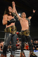 The Young Bucks ROH and IWGP Jr Heavy Tag Team Champions