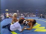 The Great American Bash 1995.00044
