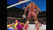 SummerSlam 1992.00033