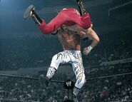 SummerSlam 2002.4
