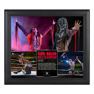 Finn Bálor NXT Championship Victory 15 x 17 Framed Photo Collage