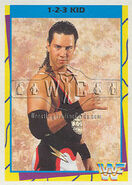 1995 WWF Wrestling Trading Cards (Merlin) 1-2-3 Kid 8