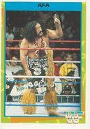 1995 WWF Wrestling Trading Cards (Merlin) Afa 40