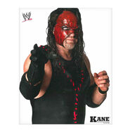 Kane 8x10 Unsigned Photo