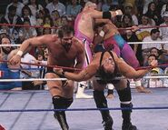 Royal Rumble 1990.8
