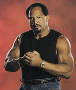Ron Simmons (2)