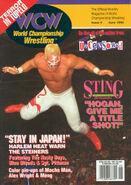 WCW Magazine - June 1995