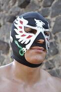 Aguila Solitaria Jr. 1