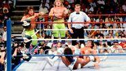 SummerSlam 1989-11