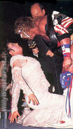 Royal Rumble 1991.12