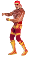 Hulkhogan 3 full