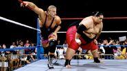 Owen Hart and Yokozuna.2