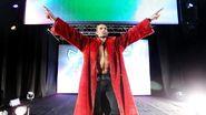 WrestleMania Revenge Tour 2015 - Budapest.12