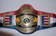 AWA Light Heavyweight Champion (old)