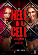 Hell in a cell poster 2016