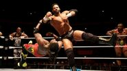 WWE World Tour 2015 - Rome 2