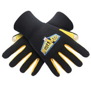 WrestleMania 29 Youth Texting Gloves
