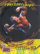 2002 WWE Absolute Divas (Fleer) Triple H 51