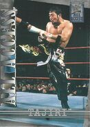 2002 WWF All Access (Fleer) Tajiri 3