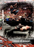 2017 WWE Road to WrestleMania Trading Cards (Topps) Shane McMahon 46